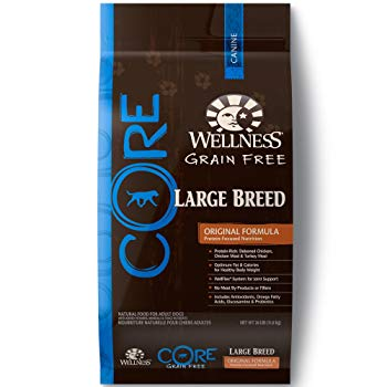 Wellness CORE Natural Grain Free Dry Dog Food, Large Breed, 26-Pound Bag