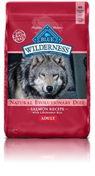 Best Dog Food For Aging Labs