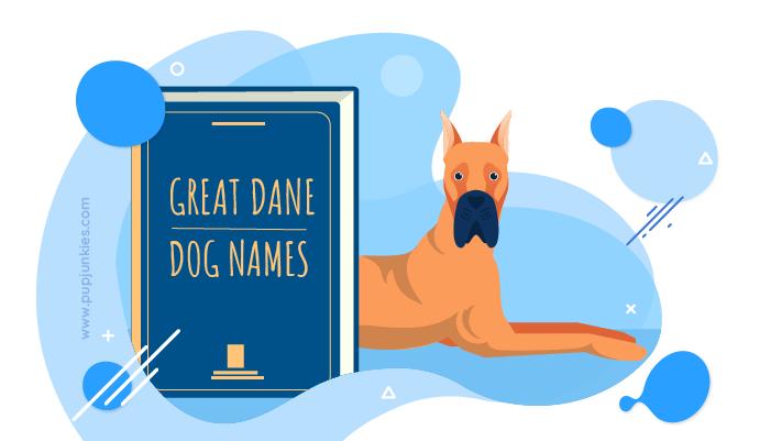 Great Dane Dog Names