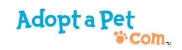adopt a pet blog