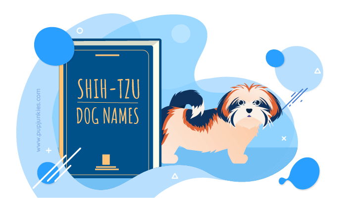 Shih Tzu Dog Names 2020