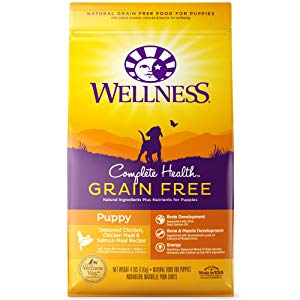 Wellness Complete Health Grain-Free Puppy Food