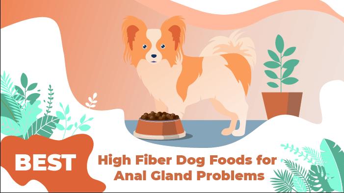 fiber food_1