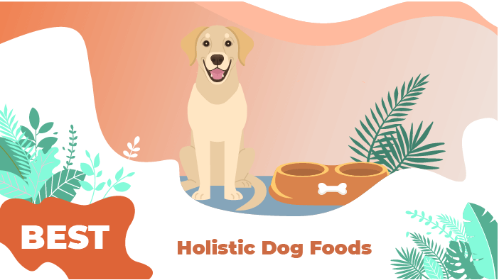 holistic food