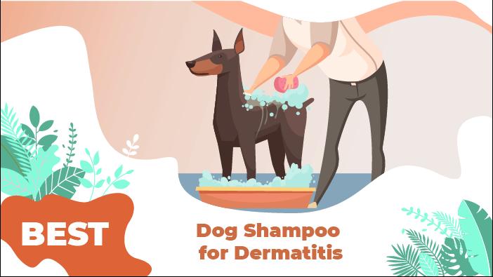 dermatits shampoo
