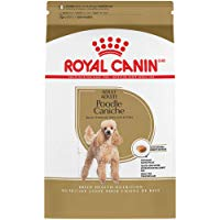 Royal Canin Breed Health Nutrition Poodle
