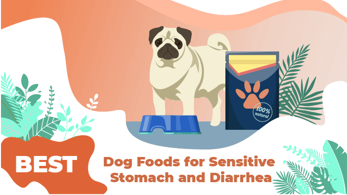 sensitive stomach dog food