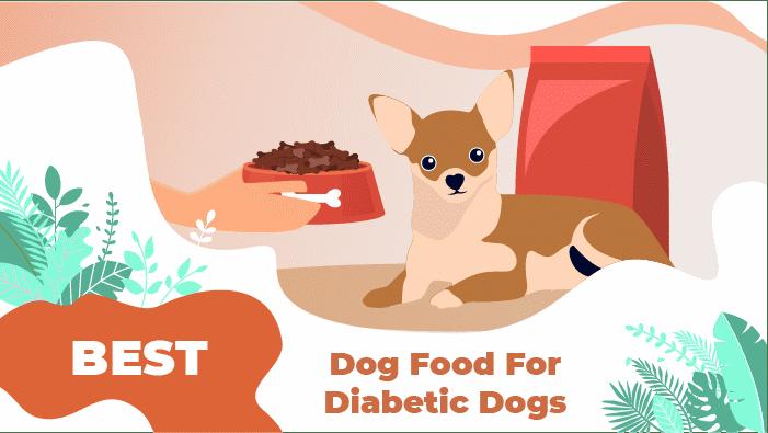 diab dog food_1