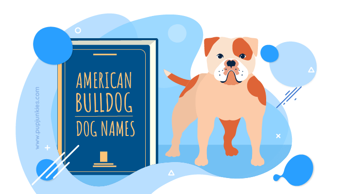 american bulldog dog names