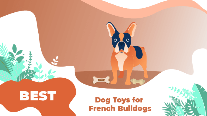 Dog Toys for French Bulldogs