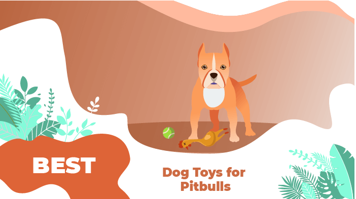 Best Dog Toys for Pitbulls