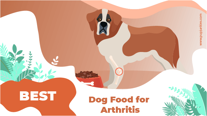 dog food arthritis