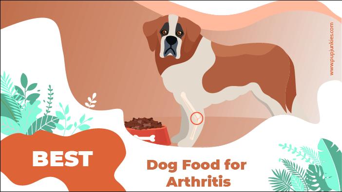 dog food arthritis