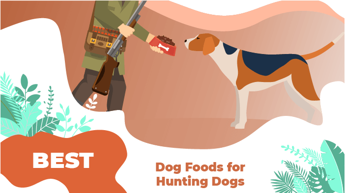 food-hunting-dogs-1