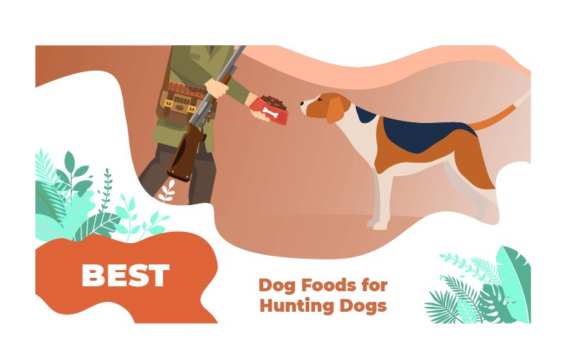 food hunting dogs