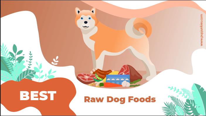 best raw dog food