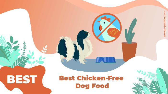chicken free