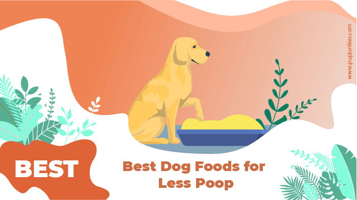 less poop dog food