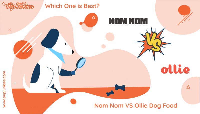 Nom Nom VS Ollie