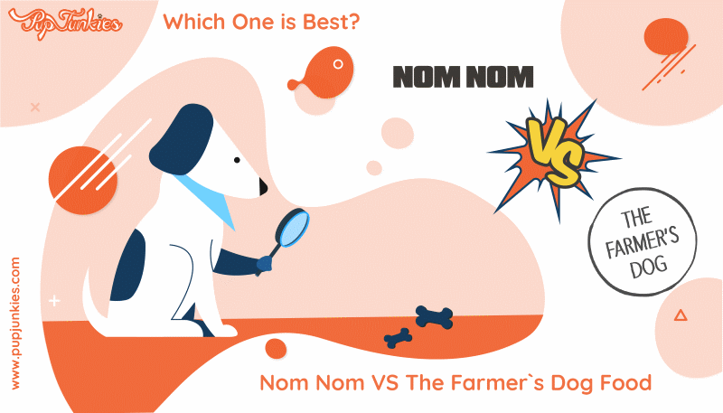 Nom Nom VS The Farmer`s Dog