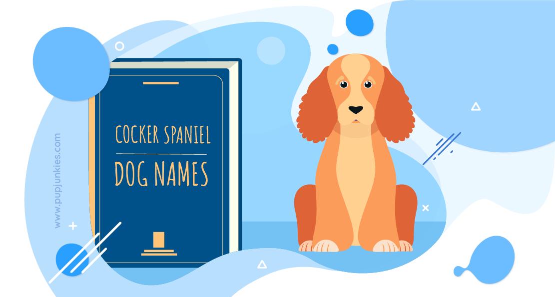 Cocker Spaniel Dog Names