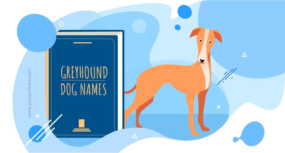 Greyhound Dog Names