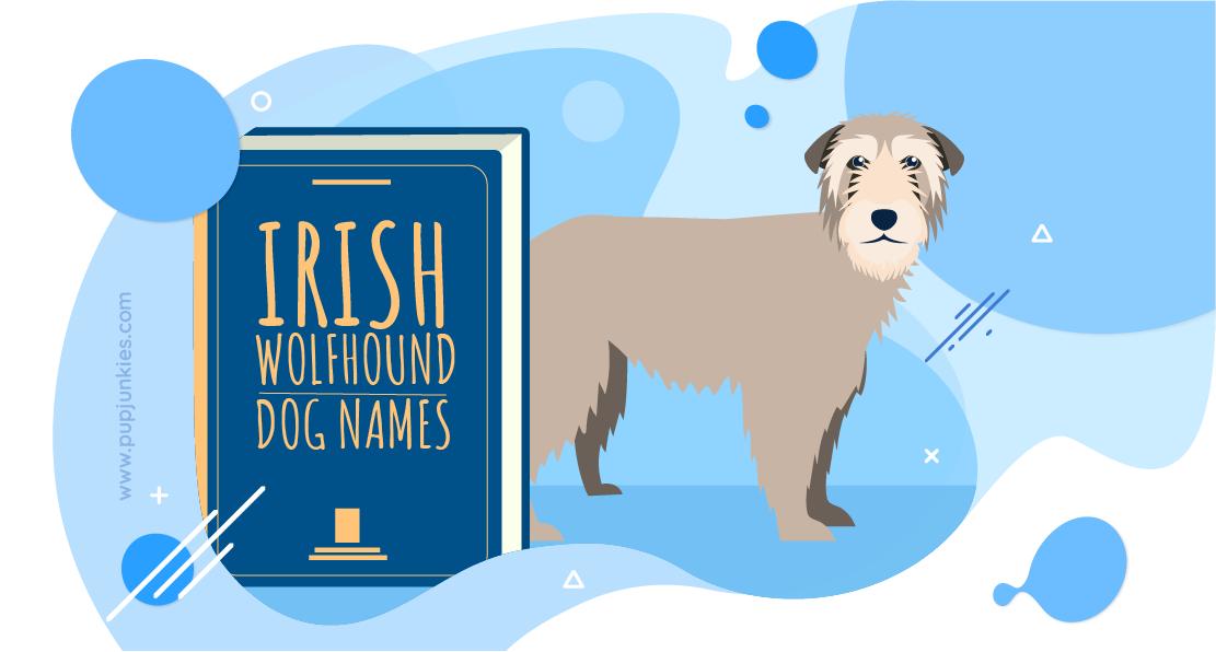 Irish Wolfhound Dog Names