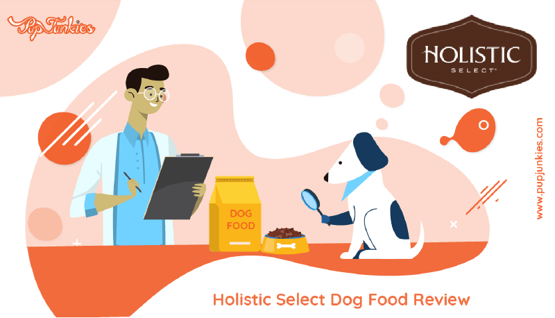Holistic Select Dog Food Review