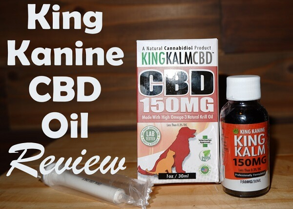 King Kanine CBD Oil Review