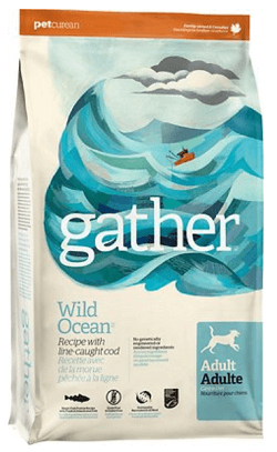Gather Wild Ocean Line-Caught Cod Dry Dog Food