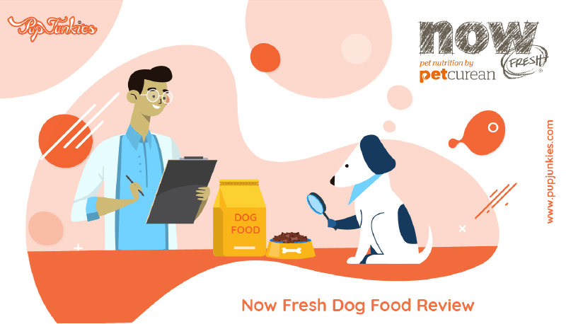 Now Fresh Dog Food Review