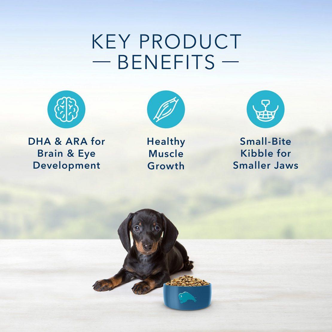 Blue Buffalo Life Protection Formula Natural Puppy Small Breed Dry Dog Food