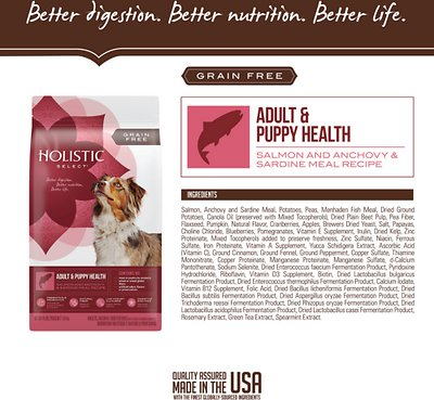 Holistic Select Adult & Puppy Grain-Free Salmon, Anchovy & Sardine Meal Recipe Dry Dog Food