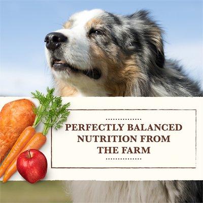 Whole Earth Farms Grain-Free Chicken & Turkey Recipe Canned Dog Food