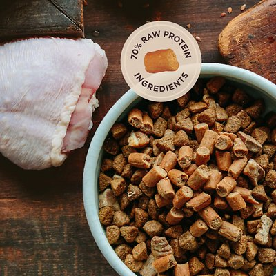 Wellness CORE Bowl Boosters Tender Turkey & Chicken Recipe