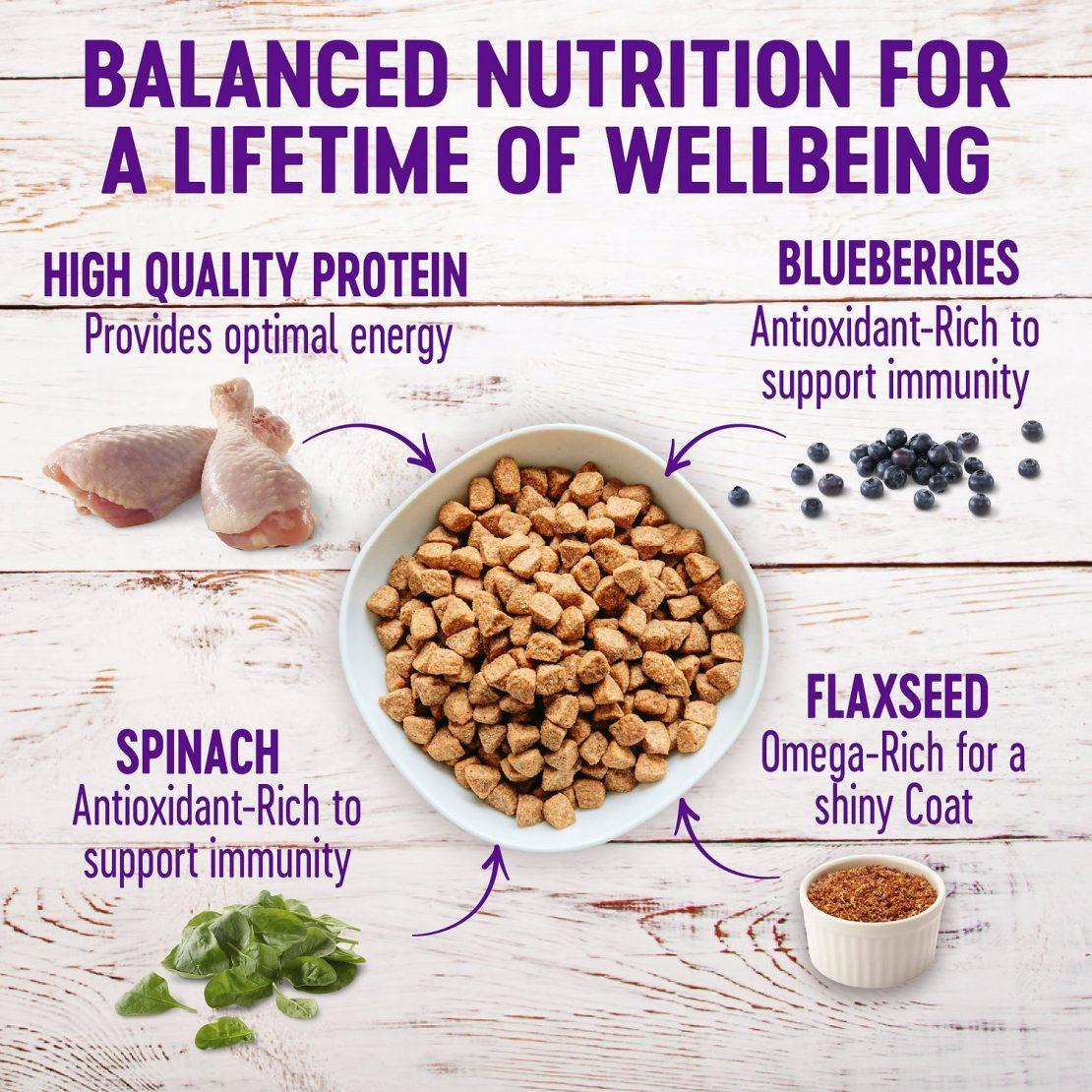 Wellness Complete Health Grain-Free Puppy Food