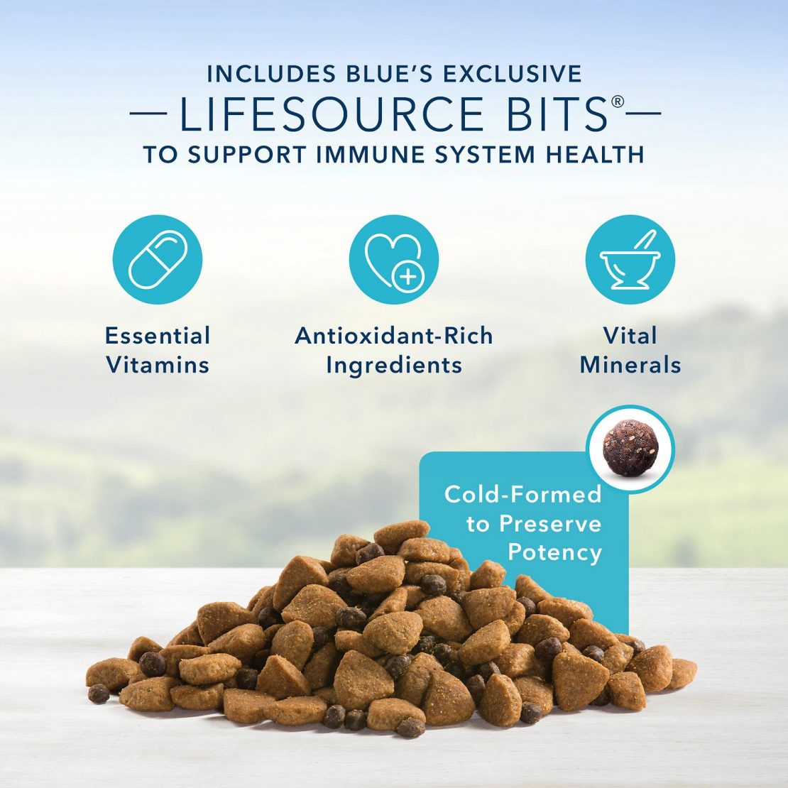 Blue Buffalo Life Protection Formula Natural Senior Large Breed Dry Dog Food