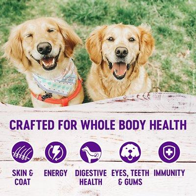 Wellness Complete Health Senior Recipe Dry Food
