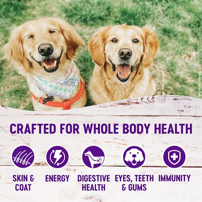 Wellness Complete Health Senior Deboned Chicken & Barley Recipe Dry Dog Food