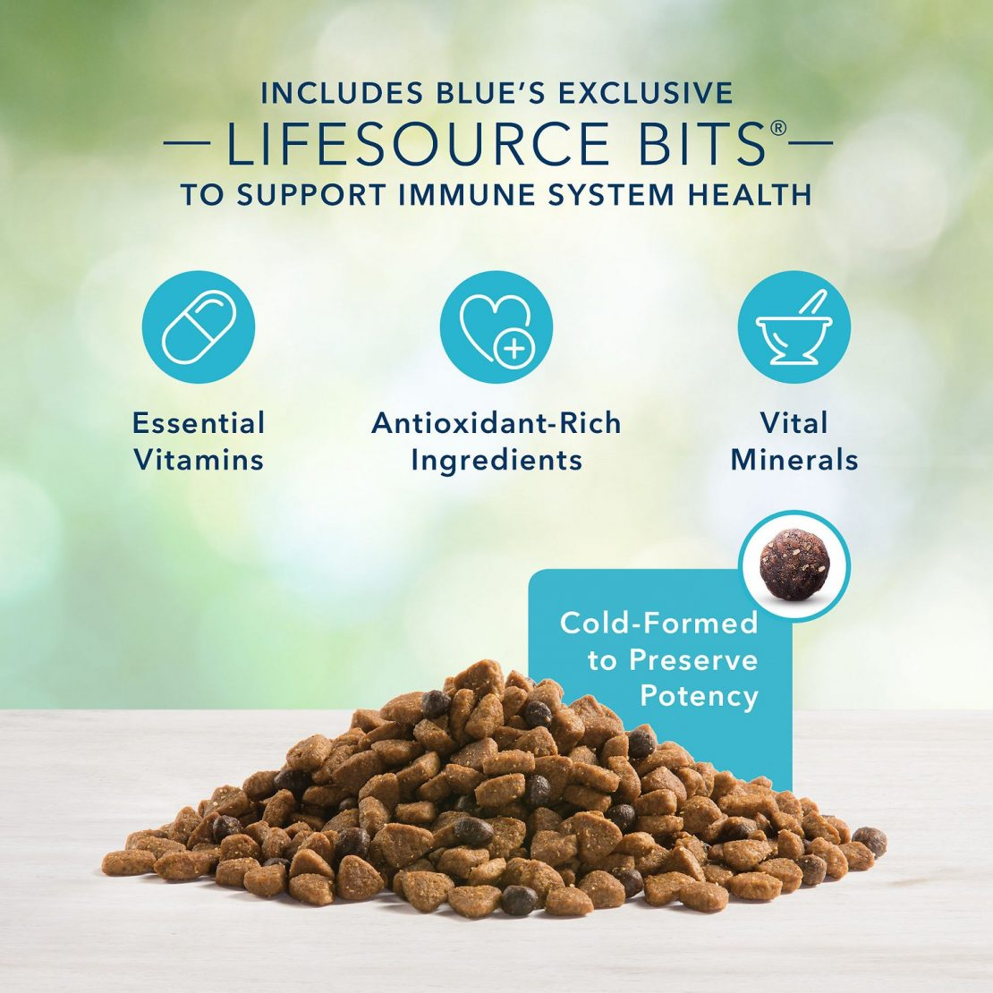 Blue Buffalo Life Protection Formula Natural Puppy Dry Dog Food